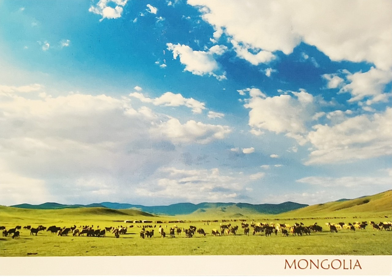 The Meadows ofMongolia