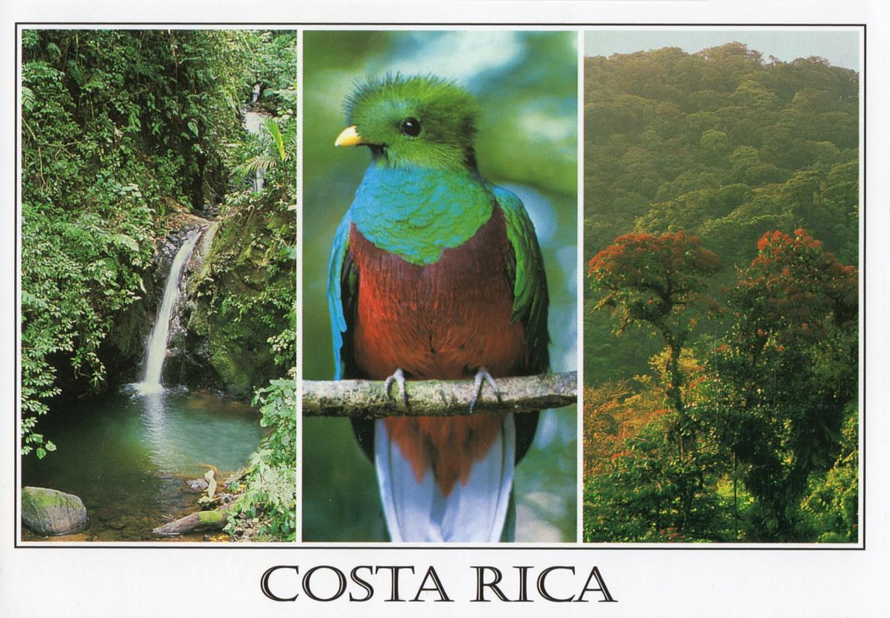 Cloud Forest, Monteverde, CostaRica