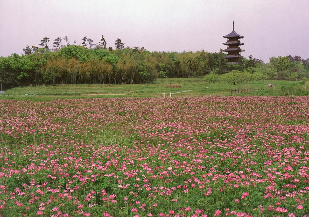 Pagoda in Astragalus Fields